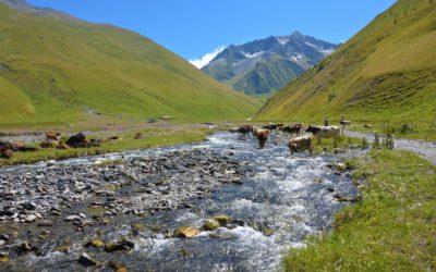 Trekking a Kazbegi: come muoversi e tutte le escursioni più belle