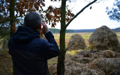 Visitare la foresta di Białowieża (lato polacco!)