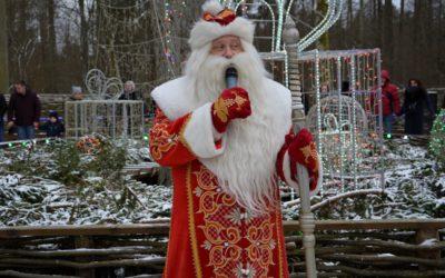 Belovezhskaya Pushcha: la foresta da non perdere in Bielorussia